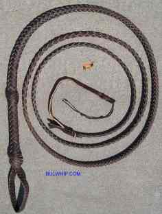 Bullwhip 8 Plait Brown End Loop Indy